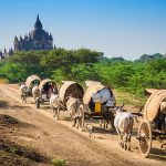 Bagan - Salay (Sale) - Mt. Popa Tour