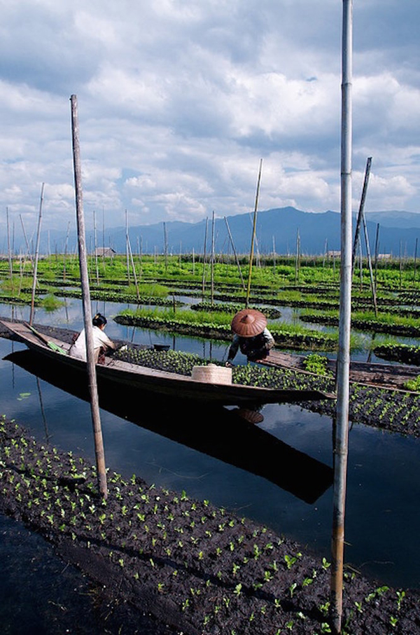 Floating Gardens in Inle Lake, Myanmar