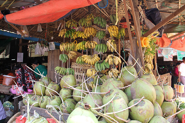 Bagan day trip with a visit to the colorful Nyaung U Market