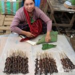 Burmese lady selling dried ills