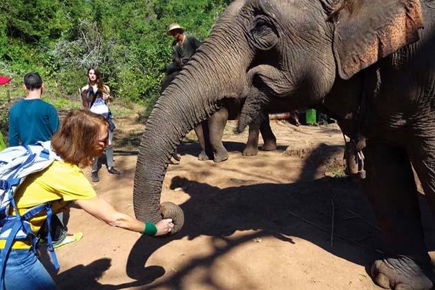 Elephant Sanctuary in Myanmar