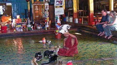 Glimpse of Myanmar – 6 Days
