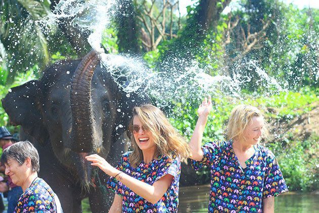 tourists play with the elephant in Kanta elephant sanctuary