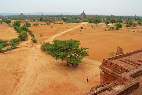 Pya Tha Da Temple