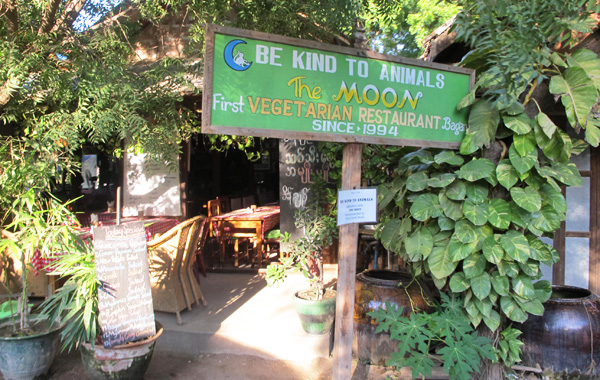 Be Kind to Animals The Moon Restaurant