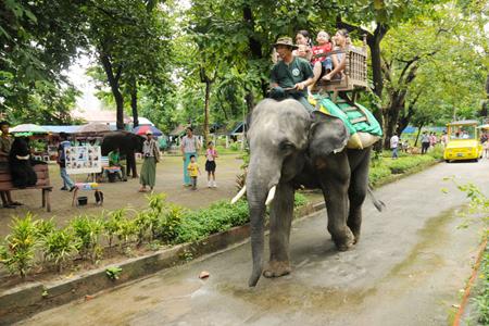 Zoological Garden Yangon Myanmar