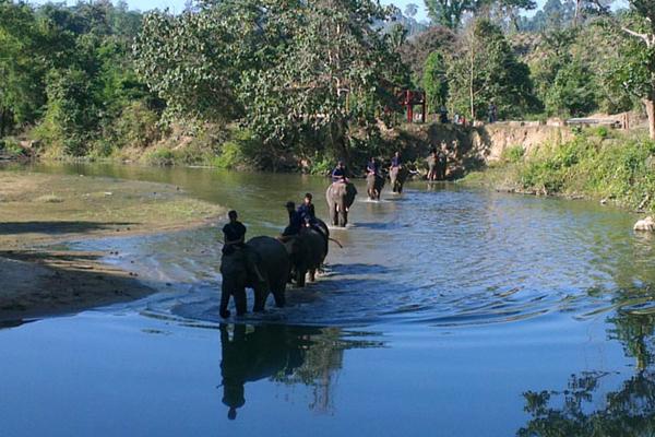 Pho Kyar Forest Resort