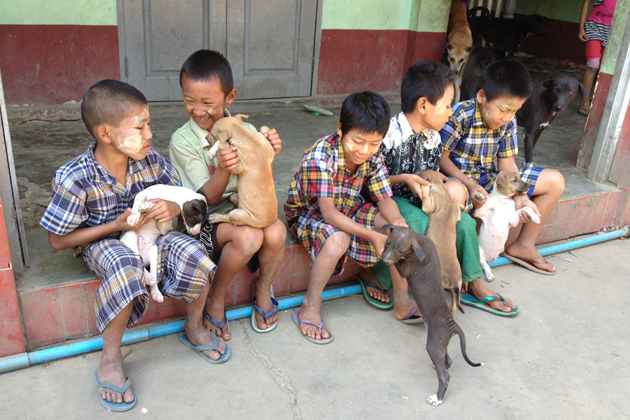 Happy children play around with cute puppies in the orphanage near Yangon