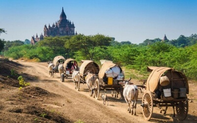 Bagan – Salay (Sale) – Mt. Popa – Full Day