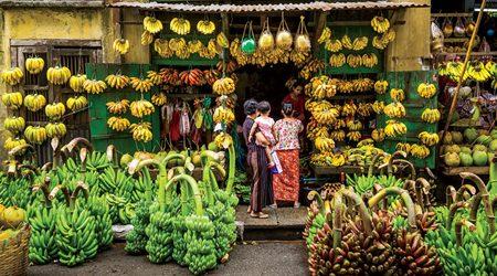 Banana Shop in Yangon