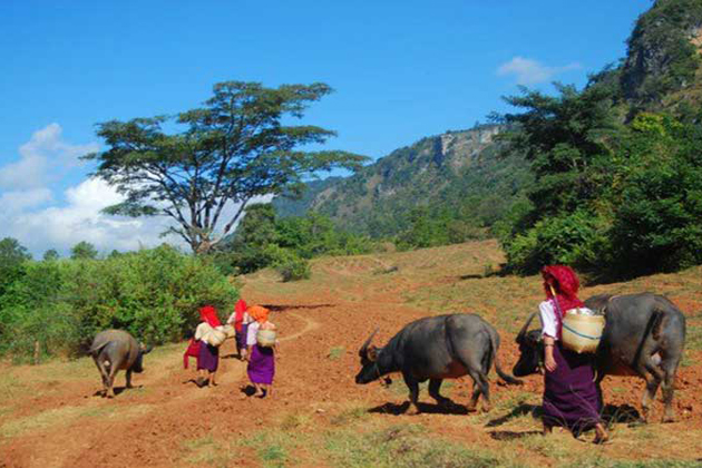 Encounter local tribes in the half day Inle Lake trekking tour