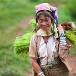 Hill tribal lady with long neck after field time in Loikaw