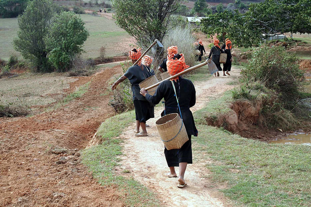 Local tribal women come home after a long working day on farms, Taung Yoe Tribal Village, Inle Lake