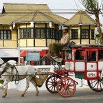 Pyin Oo Lwin horse cart
