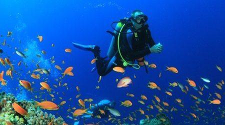 Myeik Archipelago Diving Adventure – 5 Days