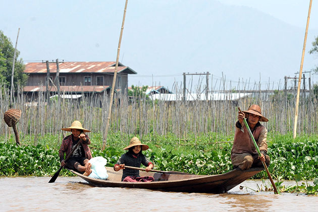 Unique ecosystem in Inle Lake - Myanmar