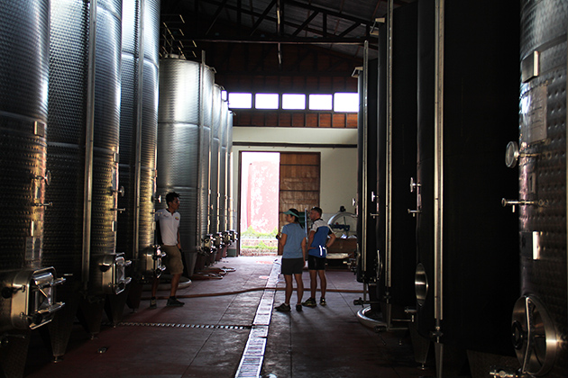 Myanmar Red Mountain Winery