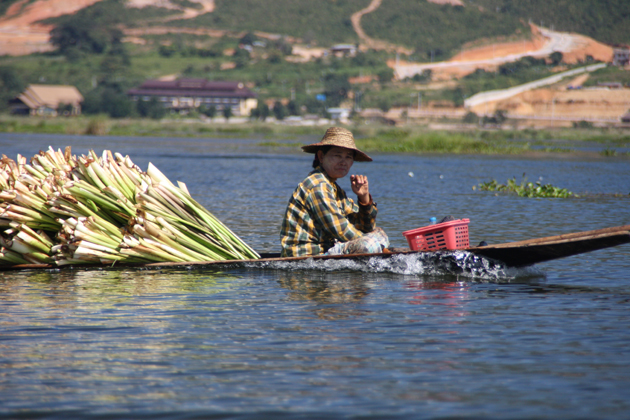 The Process of Making Inle Lotus Silk Fabric