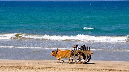 Ngapali beach vacation