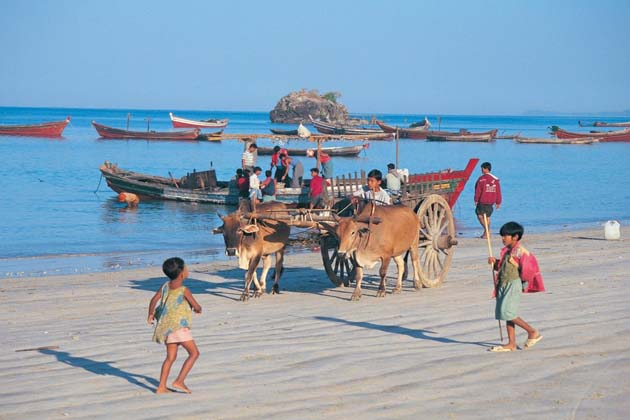 horse carriage in Ngapali Beach