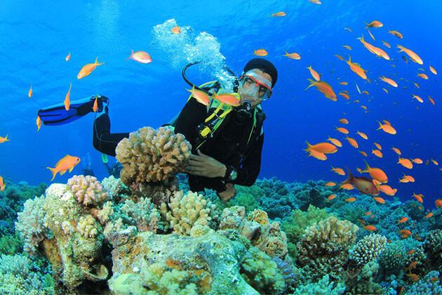 myeik diving
