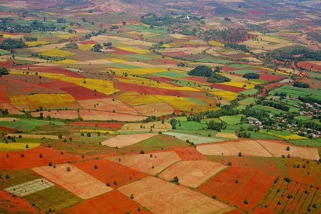 the colorful field in Kalaw