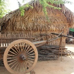 Gain an insight into the local life of Burmese people in Minanthu Village-Bagan