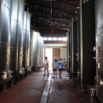 the wine factory in Red Mountain Estate