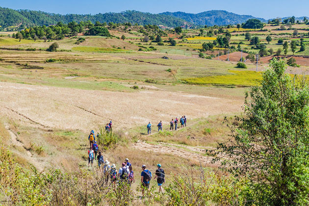 tourists trekking through the scenic landscape of Kalaw