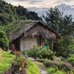 trekking through the beautiful village in Chiang Mai is an amazing activity