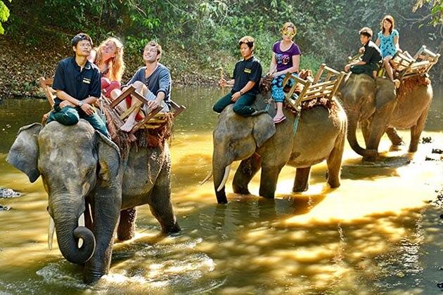 Experience Myanmar-elephent-camp in Myanmar beach holiday
