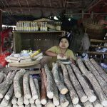 the local woman selling tanakha in Nyaung U market