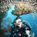 Macleod Island diving
