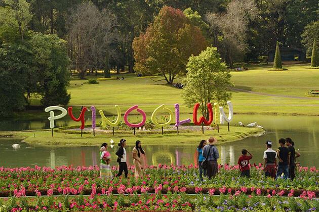 botanical garden pyin oo lwin