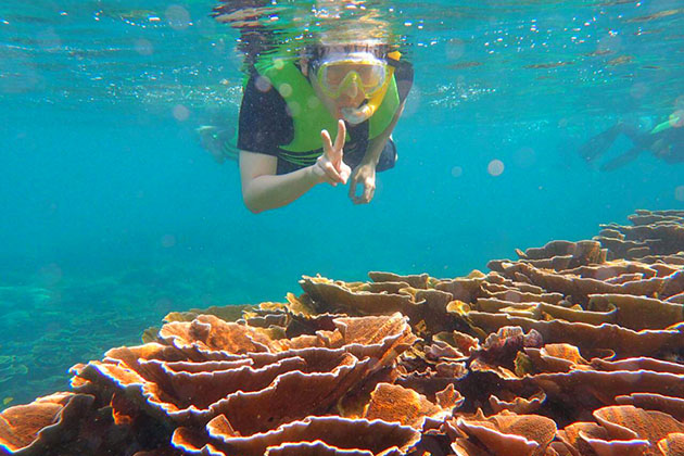 observe the marine life of Nyaung Oo Phee island